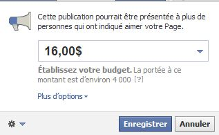 Facebook_pub